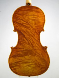 Violino 2012