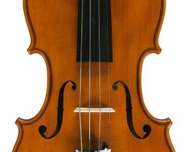 Violin 2001