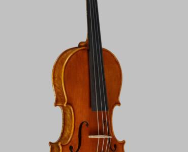 Violino 2005