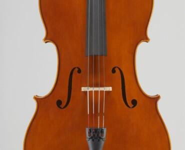Violoncello 2007