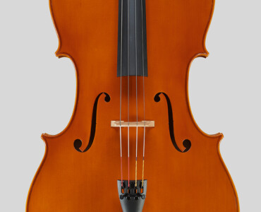 """20th anniversary model Golden Series"" cello 2012"