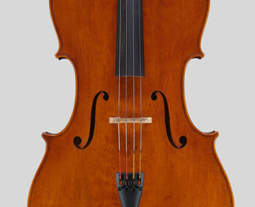 2013 ALI book professional Cello